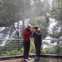 Rain Forest Walk2_84